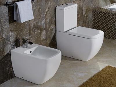 Rak Ceramics Toilets & Bidets