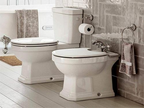 Roca Toilets & Bidets