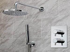 Bristan Showers